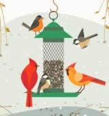 Birds feeder winter